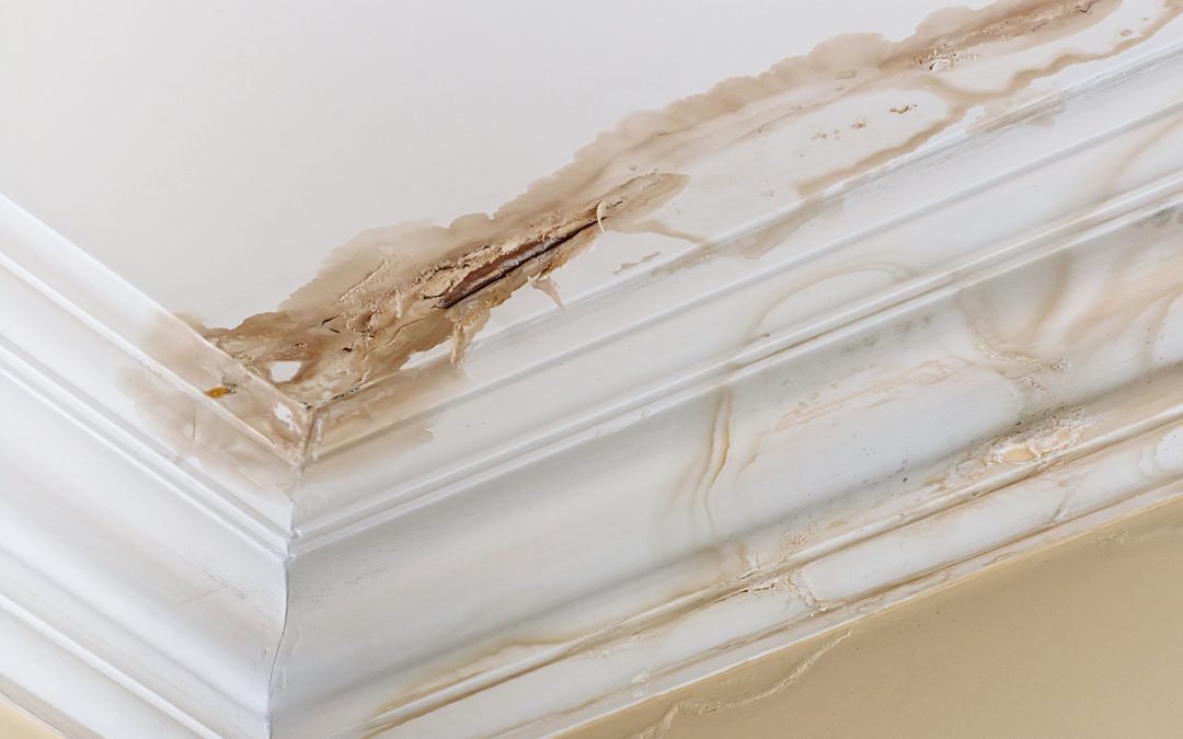 6 Places Where Water Damage in the Home Can Occur